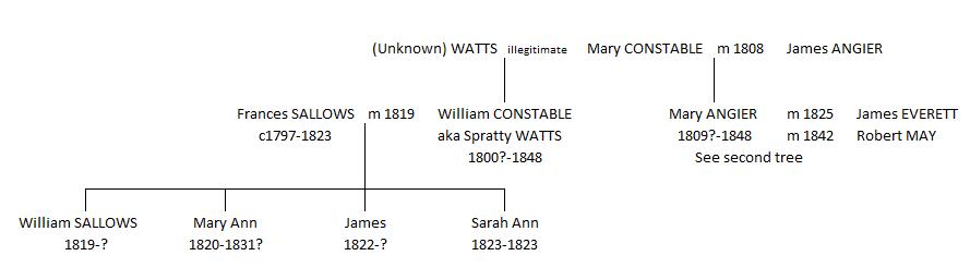 Mary May - tree 1