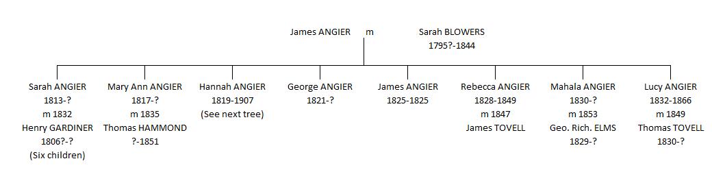 Hannah Southgate tree 1
